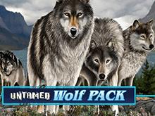 Дикая Волчья Стая в Вулкан Удачи